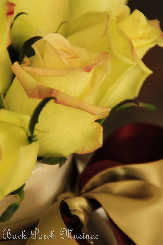 rose20