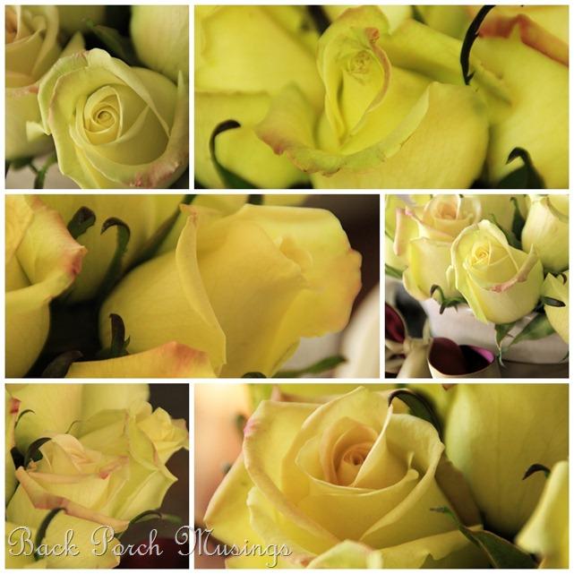 rose mosaicB