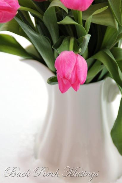 tulipsAAA4