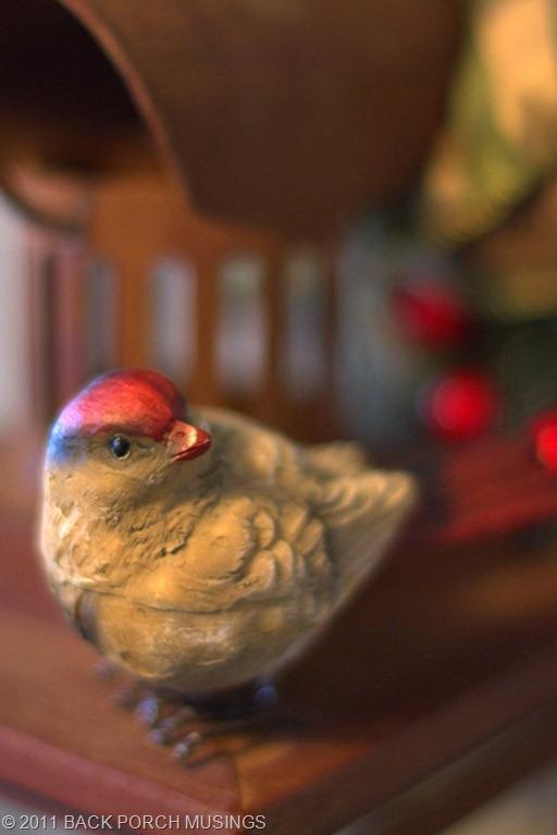 birdtable43