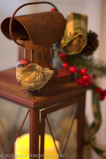birdtable49