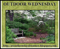 Outdoor_Wednesday_logo[4]