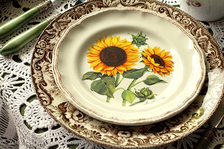 sunflower45