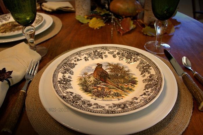 pheasant41