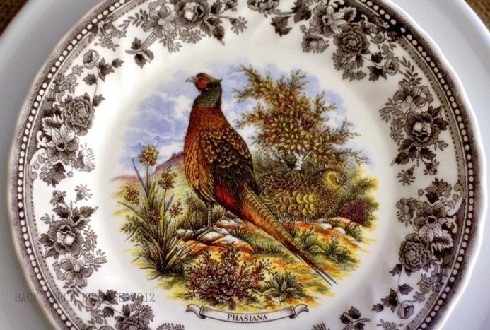 pheasant51