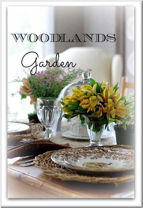 woodlands40