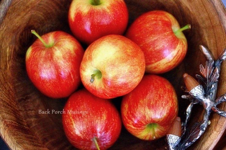 ApplesnAcorns11
